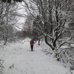 Bloggerwanderung im winterlichen Hohen Venn