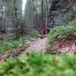 Trailrunning auf der Extra Tour B des Mullerthal Trails