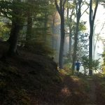 Projekt Trailrunning – Zwischenbericht Kilometer 500