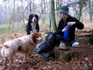 Geocachen mit Hund