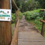 Der Feldberg-Steig - Ein Premiumwanderweg im Hochschwarzwald
