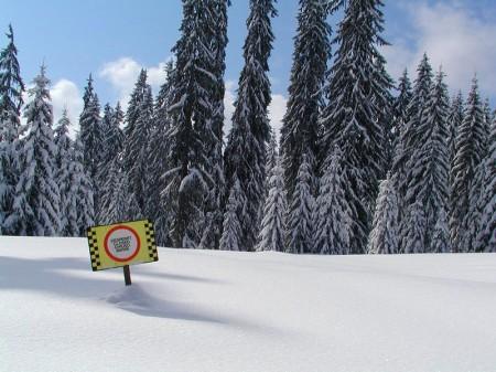 Serie auf outdoor.de : Powderalarm ohne Lawinentod