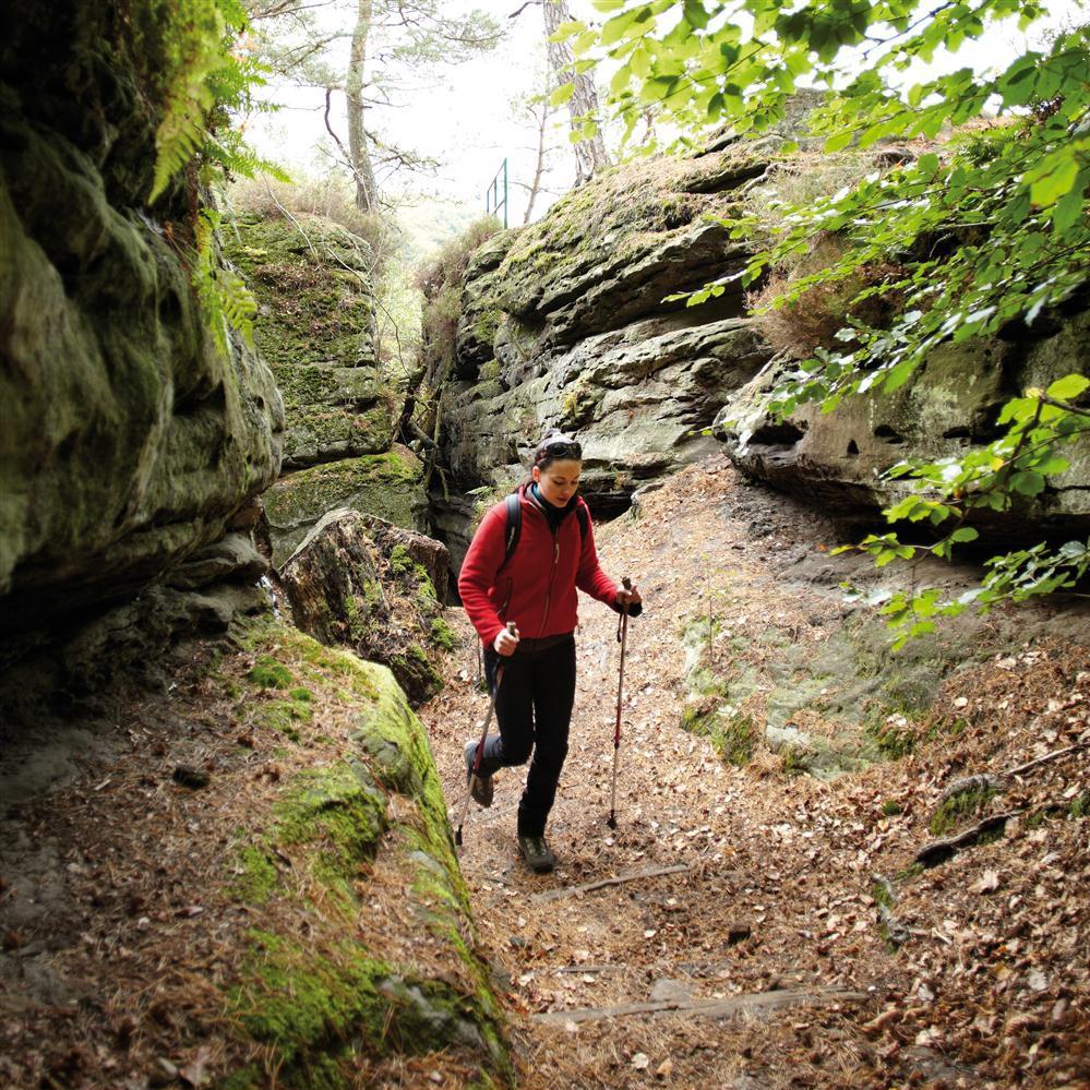 Nordic Walking im Mullerthal