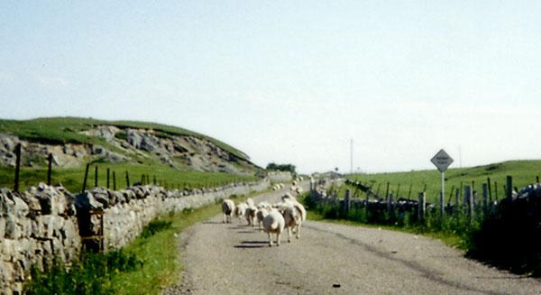Schottland Tour