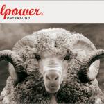 Woolpower – Der Spezialist für die kalten Tage